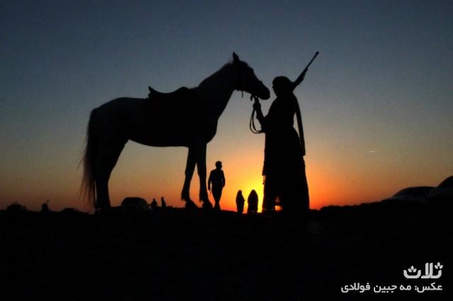اسبدوانی اهرم (۱۴)